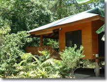 cape tribulation accommodation north queensland