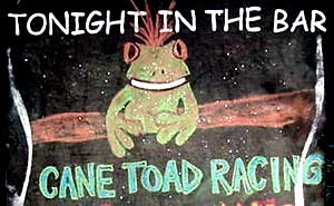 cane toad races in pk's jungle village cape tribulation daintree