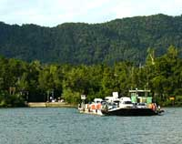 Ferry across the Daintree river