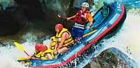 white water rafting tour froom port douglas