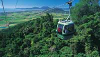skyrail and kuranda train tour from port douglas